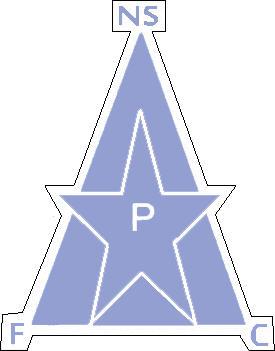 Escudo de NEW STAR F.C. (CAMERÚN)