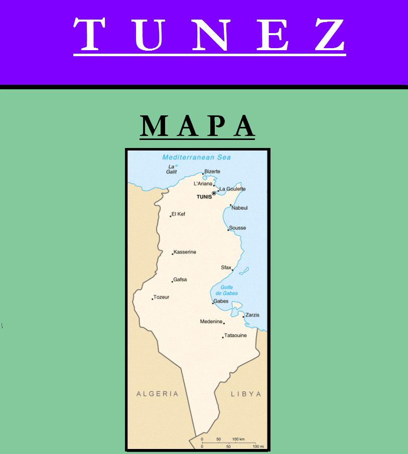 Escudo de MAPA DE TÚNEZ