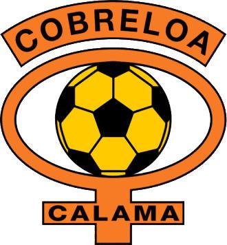 Escudo de C.D. COBRELOA (CHILE)