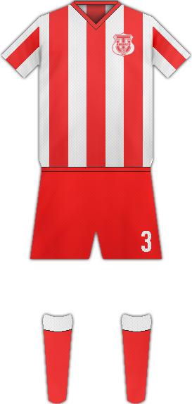 Camiseta C. TÉCNICO UNIVERSITARIO