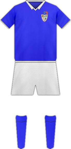Camiseta C.D. BINEFAR