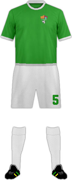 Camiseta C.D. FUENSPORT