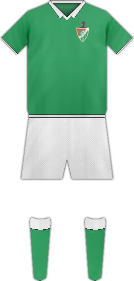 Camiseta CULTURAL DE GUARNIZO