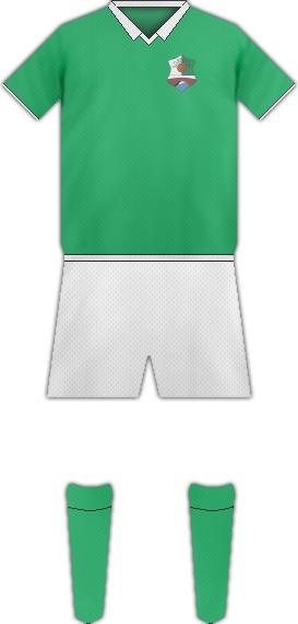Camiseta S.D. REOCIN