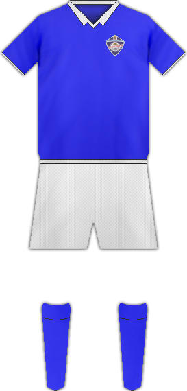 Camiseta MANCHEGO CIUDAD R. C.F.