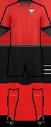 Camiseta C.D. BALOMPÉDICA ALBACETE