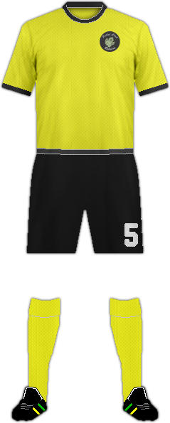 Camiseta F.C. RIBEIRO