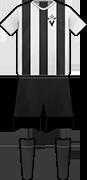 Camiseta C.D. VICTORIA