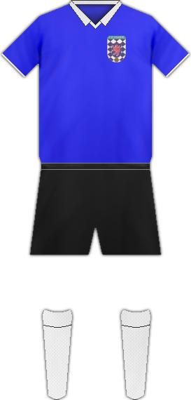 Camiseta C.D. HUARTE