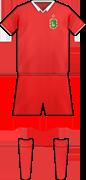 Camiseta C.D. AMAYA