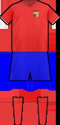 Camiseta PICASENT C.F.