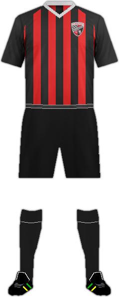 Equipación FC INGOLSTADT 04