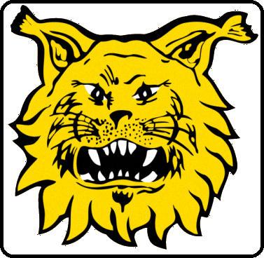 Escudo de FC ILVES TAMPERE (FINLANDIA)