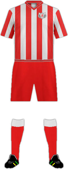 Camiseta HOLYWELL TOWN FC