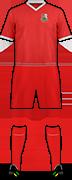 Camiseta LLANELLI AFC