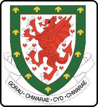 Escudo de SELECCIÓN GALESA (GALES)