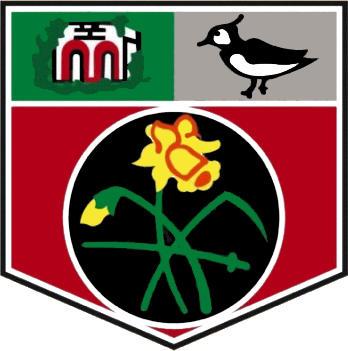 Escudo de UNDY ATHLETIC FC (GALES)