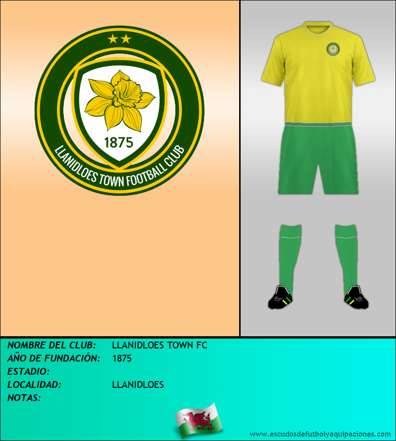 Escudo de LLANIDLOES TOWN FC