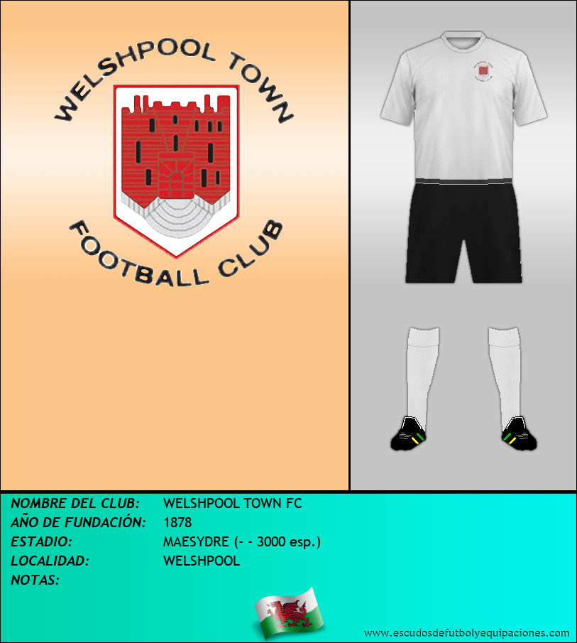 Escudo de WELSHPOOL TOWN FC