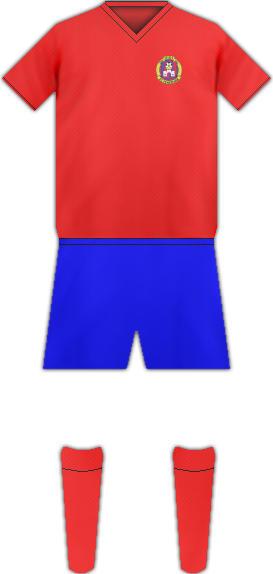 Equipación FC FEHERVAR