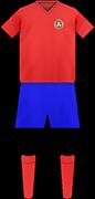 Camiseta FC FEHERVAR