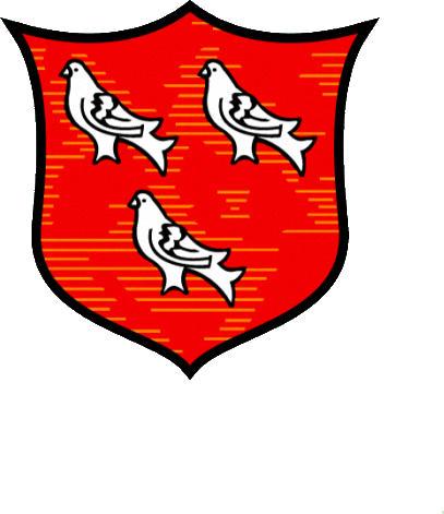 Escudo de DUNDALK F.C. (IRLANDA)