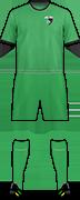 Camiseta FK METALURG
